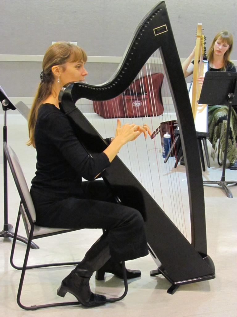Harp workshop at Place des Arts